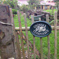 Besøg I Grönska Terapihave På Fyn